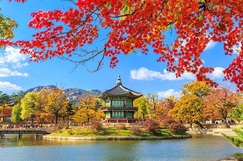 TOUR HÀ NỘI - HÀN QUỐC - SEOUL - NAMI - EVERLAND 05 NGÀY 04 ĐÊM